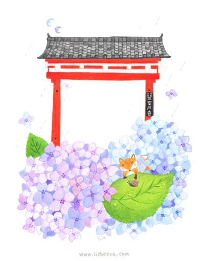 歲時京都-紫陽花